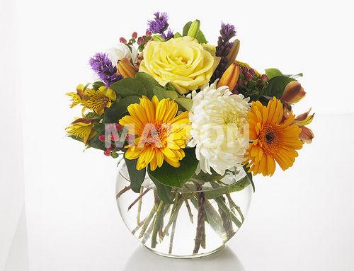 fleurs en vase page 3. Black Bedroom Furniture Sets. Home Design Ideas